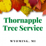 Thornapple Tree Service Wyoming Logo